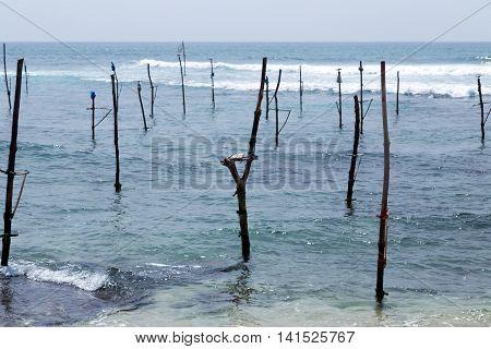 Sri lanka traditional fisherman sticks in Indian ocean