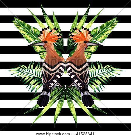 Abstract pattern illustration tropic vector animals hoopoe bird in a trendy mirror style on striped black and white background with a floral summer jungle banana palm leaves and plants