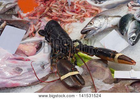 Seafood Is Displayed