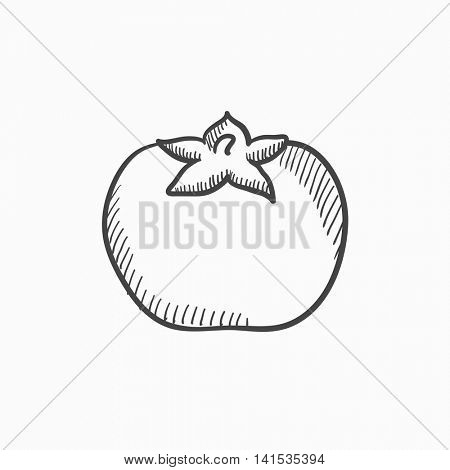 Tomato vector sketch icon isolated on background. Hand drawn Tomato icon. Tomato sketch icon for infographic, website or app.
