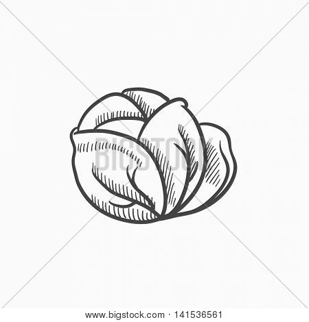 Cabbage vector sketch icon isolated on background. Hand drawn Cabbage icon. Cabbage sketch icon for infographic, website or app.