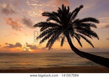Stock image of Sunset Beach O'ahu Hawaii