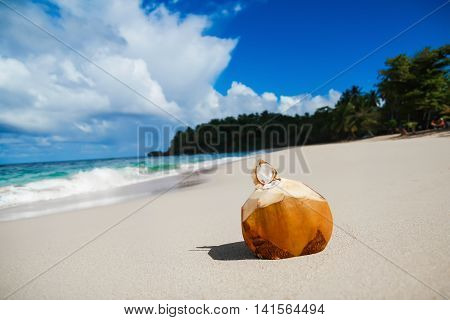Coconut With Pipe On Sandy Beach Of Caribbean Sea