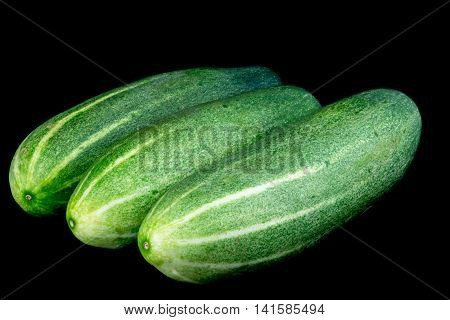 Three organic cucumbers isolated against a black background