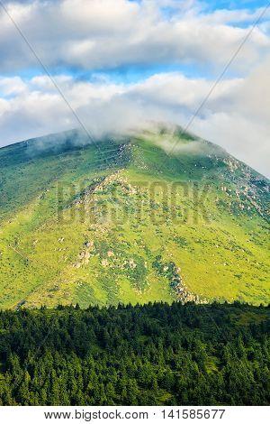 Carpathian mountains landscape view the Petros mount Ukraine