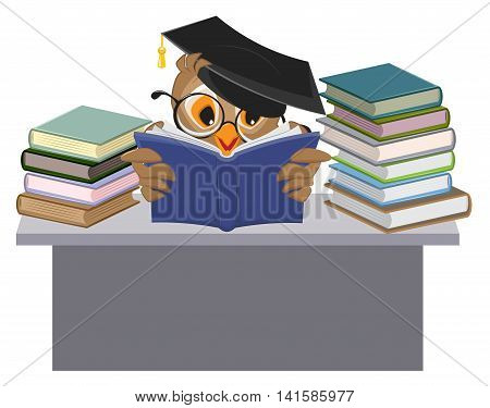 Owl in mortarboard reading book. Vector cartoon illustration