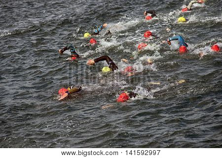 FREDERICIA DENMARK - AUGUST 6 2016: Triathletes in harbor water in the triathlon competition Challenge Denmark in Fredericia August 6 2016.