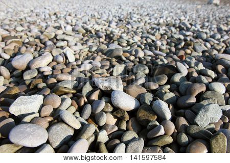 perspective view of beautiful dry round colored sea pebbles on pebble beach foreground closeup