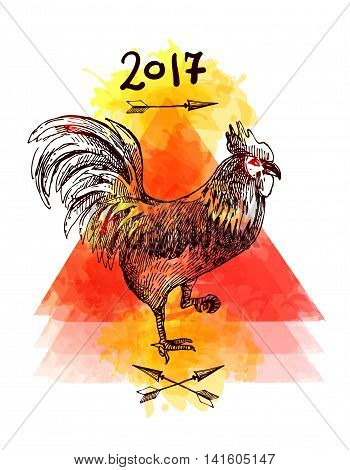 Beautiful hand drawn vector illustration sketching of cock. Tattoo style drawing. Use for postcards, print for t-shirts, posters.Symbol of 2017