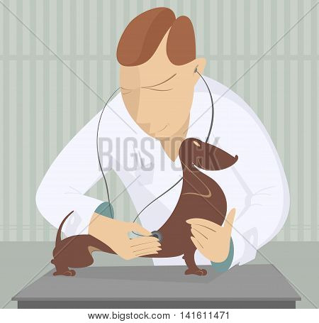Veterinarian. Veterinarian is examining a dog by endoscope