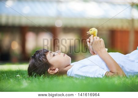 Cute girl with a spring duckling on green, grass