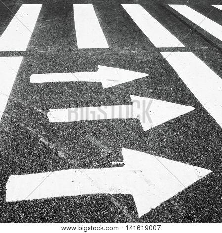 Zebra, Pedestrian Crossing With Road Marking