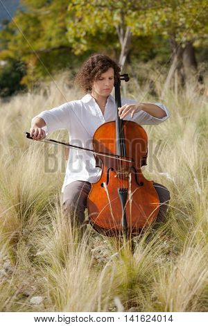 beautiful girl plays the cello between fields