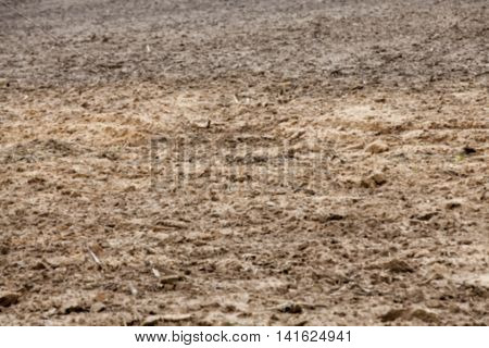 plowed for sowing new crop land is brown in color, photographed closeup defocus