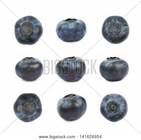Single ripe bilberry isolated over the white background, set of nine different foreshortenings