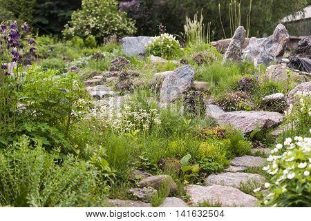 alpine hill flowerbed garden design. in Alpine garden