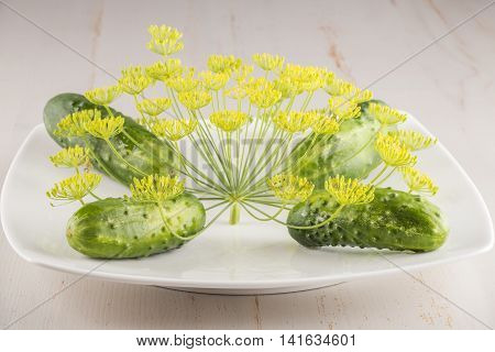 plate of cucumbers with fennel on a gray background