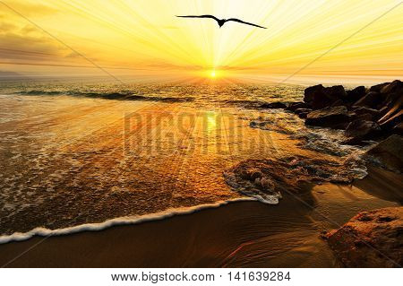 Bird silhouette ocean sunset is a single bird flying over the ocean water as sun beams burst forth from the sun in a vivid surreal colorful scenic seascape.