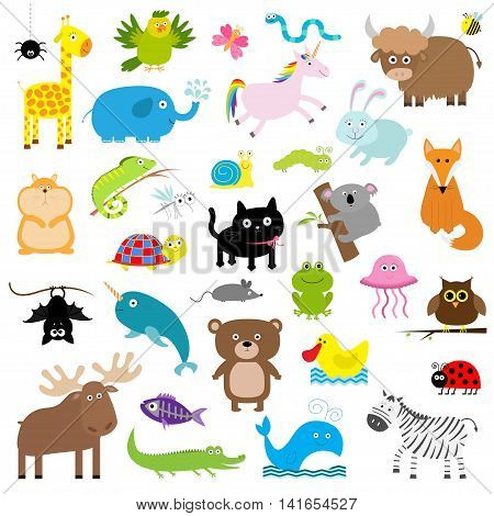 Zoo animal set. Cute cartoon character collection. Isolated. White background. Baby children education. Alligator bear cat duck elephant frog giraffe hamster iguana Flat design Vector illustration