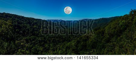 Panorama the perfect combination of natural beauty at national park. Evergreen forest against beautiful blue sky and bright full moon at night. Outdoor. The moon were NOT furnished by NASA.