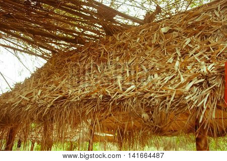 Thai style pavilion with thatched roof, Thai style house