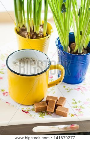 On A Tray With A Yellow Cup Of Coffee, Toffee And A Bucket Of Flowers With Bulbs