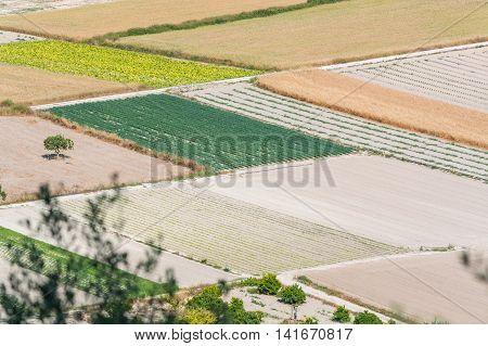 Bird perspective in various fields Mallorca Spain