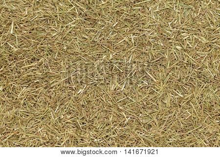 Organic dry lemongrass (Cymbopogon flexuosus) fine cut. Macro close up background texture. Top view.