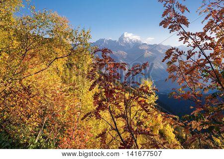 Autumn landscape. Sunny day in the mountains. View of the mountain Ushba with Mount Mheer. Main Caucasian ridge. Zemo Svaneti, Georgia