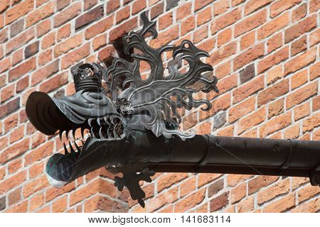 Old drainpipe in the form dragon head closeup.