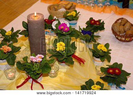 colorful primroses with candle as a romantic Valentine greeting
