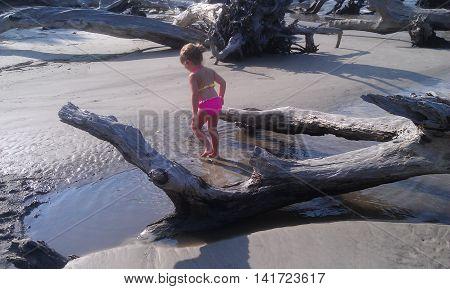 Little girl has fun at Driftwood Beach located on Jeckyll Island