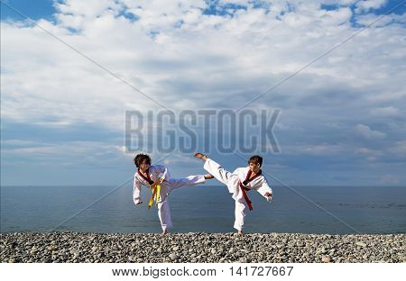 The education of the two children on the beach: Taekwondo, sport