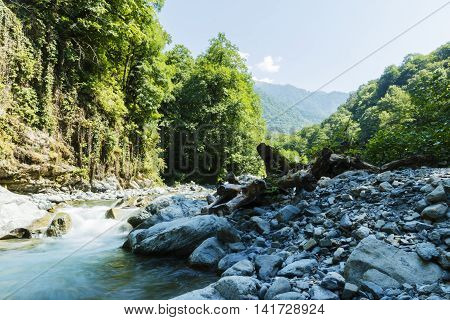 mountain river rapids Caucasus blue water green forest