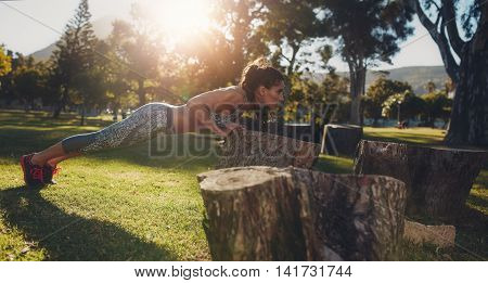 Tough Young Woman Doing Pushups On A Log At Park