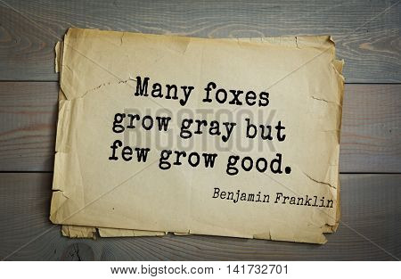 American president Benjamin Franklin (1706-1790) quote. Many foxes grow gray but few grow good.