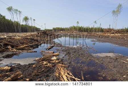 Logging operation that has been done in Saskatchewan Canada