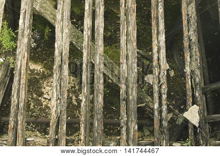 old wooden beams, logs and moss background