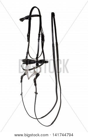 leather bridle in front of white background