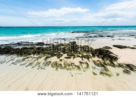 stony seashore and clear turquoise ocean water with blue sky on the background