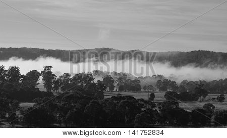 Autumn scene in rural Australia. Scene near Wauchope New South Wales. Morning fog over farmland and forests.