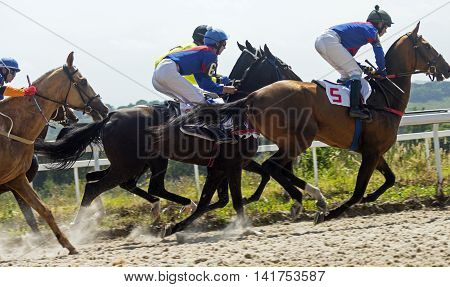 Horse race for the prize Derby in Pyatigorsk,Northern Caucasus,Russia.