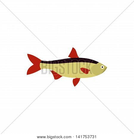 Rudd fish icon in flat style on a white background