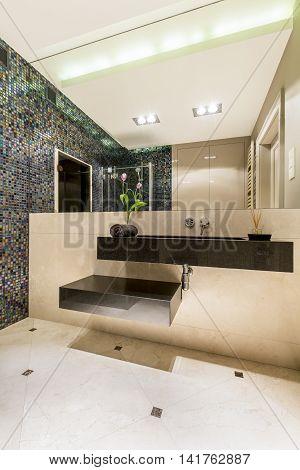 Large Portion Of Avantgarde In Modern Bathroom's Decor