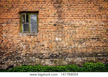 Old red brick wall with small window and green grass architecture background