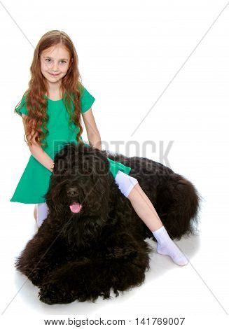 Smiling little girl with long brown hair to her waist . A girl poses for the camera with big black dog  - Isolated on white background
