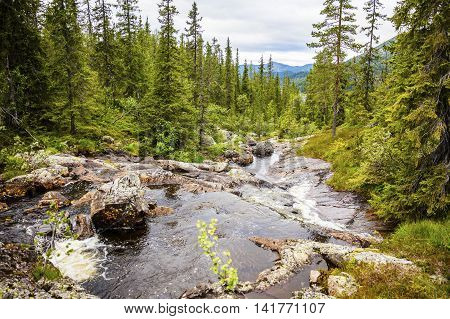 Beautiful creek in the wild forest and mountain landscape in Telemark, Norway. Untouched nature and environment.