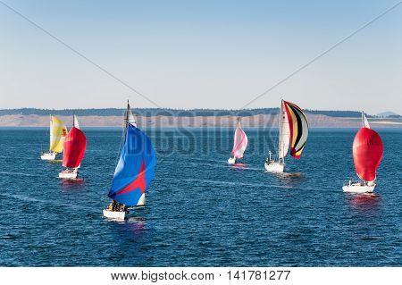 Port Townsed, Washington State, USA -  July 1, 2009 :  race of sailboats on Strait of Juan de Fuca Port Townsend Washington State USA