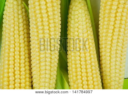 top view.Fresh sweet corn on wooden table.close view on Homemade golden corn cob.