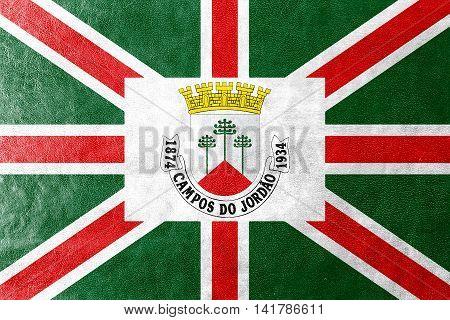 Flag Of Municipio De Campos Do Jordao, Sao Paulo, Brazil, Painted On Leather Texture